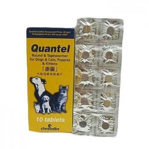 Quantel 康圖 貓狗杜蟲片 - 10粒