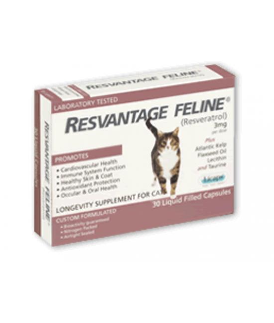 RESVANTAGE FELINE - 白藜蘆醇貓用配方30粒