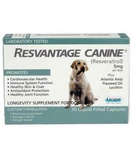 "Resvantage Canine - ""白藜蘆醇""老年及癌症犬配方"