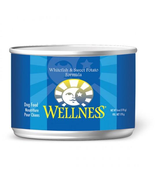 Wellness 海魚甜薯狗罐頭 6oz(24), 狗狗產品, Wellness