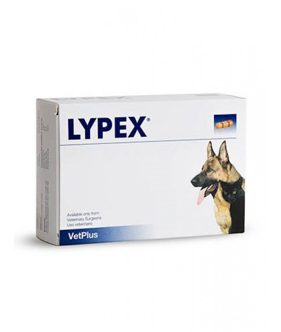 Vetplus Lypex Pancreatic Enzyme Sprinkle Capsules for Dogs & Cats - 60 Capsules